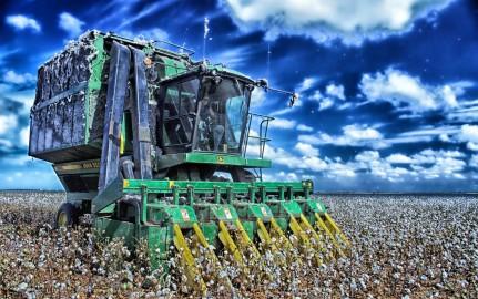 Cotton Harvester