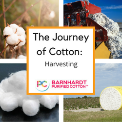 The Journey of Cotton: Harvesting