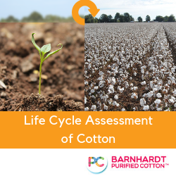 Life Cycle Assessment of Cotton