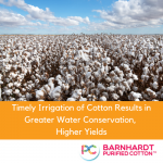 Timely Irrigation of Cotton Results in Greater Water Conservation, Higher Yields
