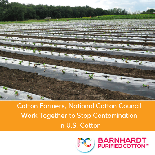 Cotton Farmers, National Cotton Council Work Together to Stop Contamination in U.S. Cotton