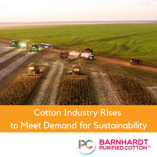 Cotton Industry Rises to Meet Demand for Sustainability